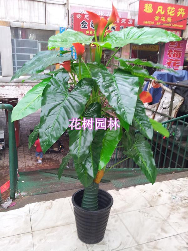 Golden dragon calla bonsai artificial tree fake tree living room decoration bonsai artificial for Artificial tree for living room