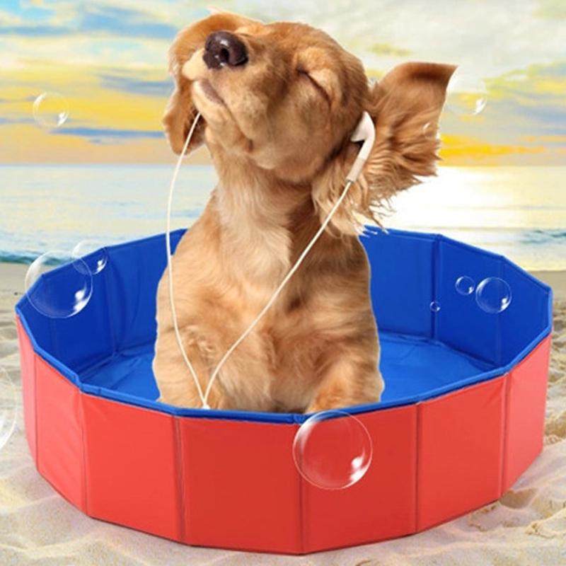 Chien piscine accessoires achetez des lots petit prix for Piscine pour grand chien
