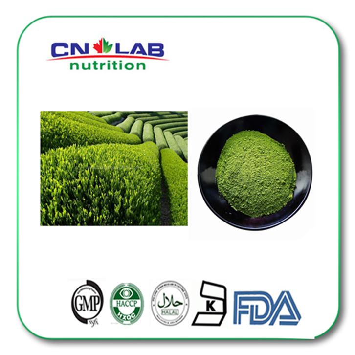 Pure natural green tea extract,green tea extract supplement,egcg green tea extract<br><br>Aliexpress