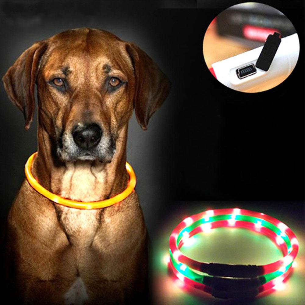 Factory Wholesale Dog Collars USB luminous pet collar led light USB charging dog collar Teddy Flash Collar Pet supplies FG(China (Mainland))