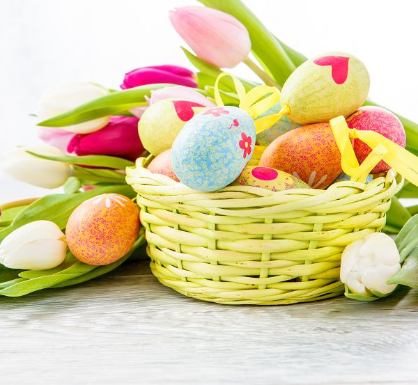 photography background 600CM*300CM New arrival Basket of Eggs photo studio Easter day zzj14(China (Mainland))