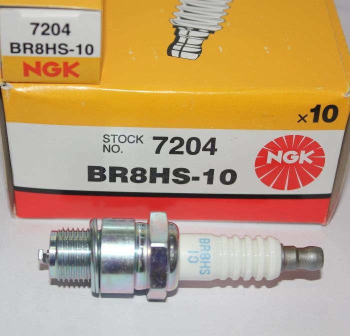 свечи для подвесных моторов ngk