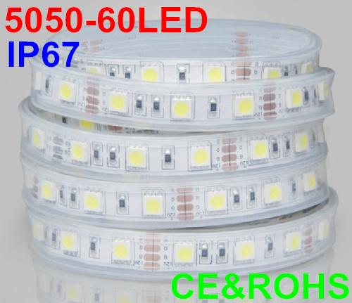 5m 300LED waterproof 12V SMD 5050 flexible strip light cool white/warm whte/yellow/red/green/blue/pink/purple/orange/RGB 60led/m - Shenzhen Rise-Top Technology Co.,LTD store