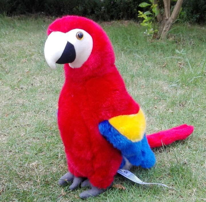 Wildlife High Quality Simulation Birds Stuffed Animals Toys Macaw Plush Toy Doll Super Nice(China (Mainland))