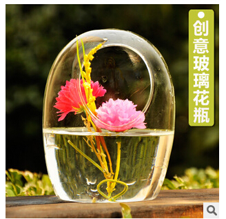 European creative pastoral egg-shaped transparent glass micro landscape flowerpot vogue to live in(China (Mainland))