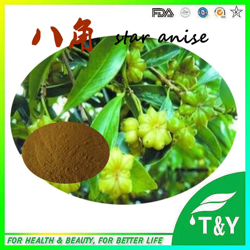 Soluble in water Star Anise Extract 20:1<br>