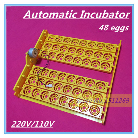 New Automatic Incubator 48 eggs Mini Incubator Poultry Equipment Chicken Duck Goose Bird Incubation Tools Free