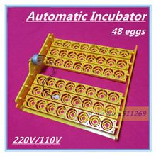New Automatic Incubator 48 eggs Mini Incubator Poultry Equipment Chicken Duck Goose Bird Incubation Tools Free shipping