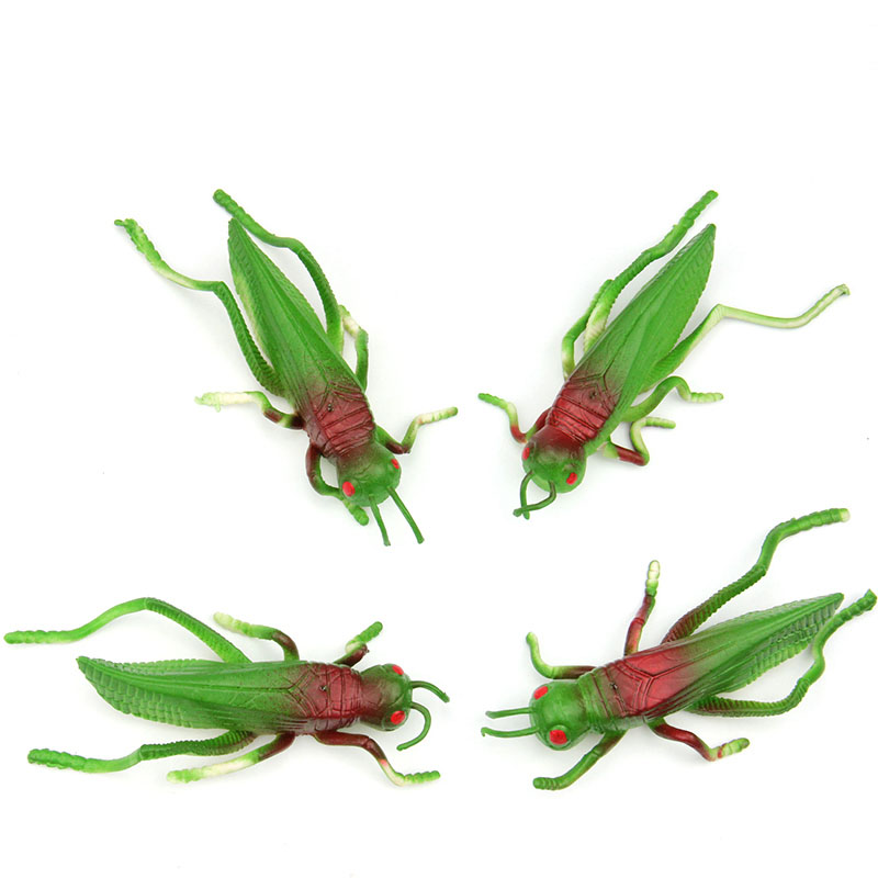 Locust grasshopper Insect model toys soft TPR material tricky early AIDS film props 4PCS/ A LOT(China (Mainland))