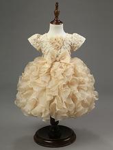 Baby Girls' Dresses Champagne Bowknot formal dress Flower Girl Dress Princess TUTU dress Autumn Winter Kids Clothing