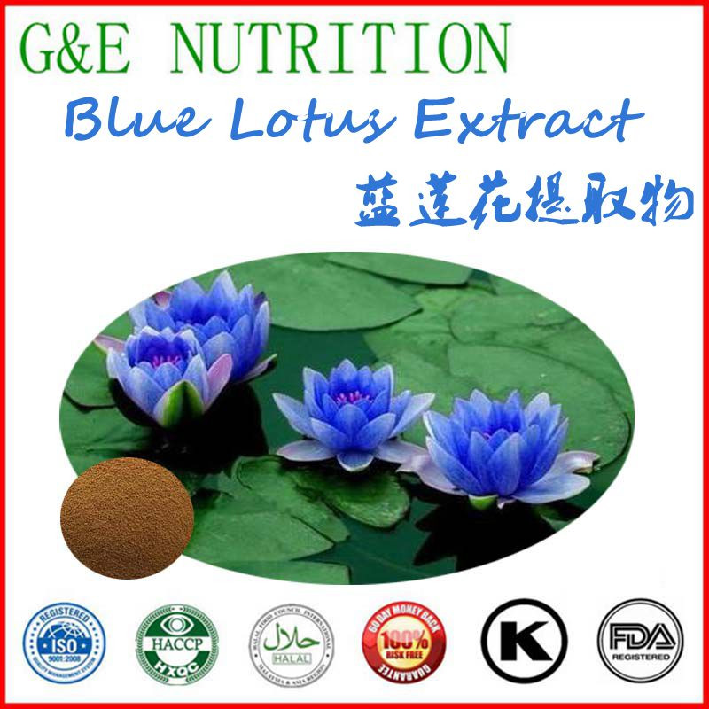 New products GMP OEM factory supply blue lotus extract,lotus leaf extract powder 900g