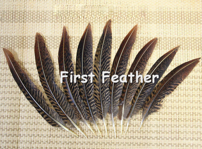 Free shipping 100pcs 10-15cm / 4-6inch natural real golden pheasant tail plumage craft feather hot bulk sale for jewelery making(China (Mainland))
