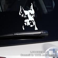 Car Stickers Dog Hound Doberman Pinscher Decals Auto Tuning Waterproof  Symmetric 16*10cm & 23*14cm Free Shipping(China (Mainland))