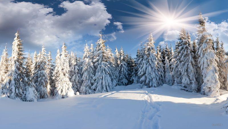 Znalezione obrazy dla zapytania winter