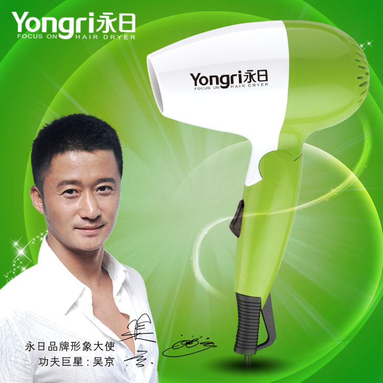 Radiation protection professional salon hair dryer anion hair dryer a hair dryer(China (Mainland))