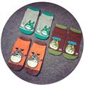 4pairs Japanese Cartoon frog Anime Women socks Men Neighbor Totoro Summer cute low tube short socks
