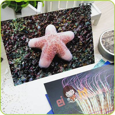 [EIGHT] Postcard /Greeting Cards Wholesale (8 pcs/set) Marine plants /For postcrossing(China (Mainland))