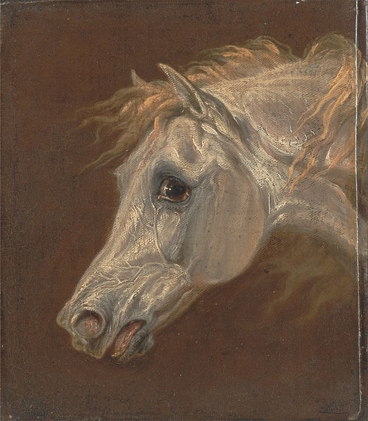 Canvas Art Prints Fabric Wall Decor Giclee Oil Painting Martin Theodore Ward - Head Of A Grey Arabian Horse(China (Mainland))
