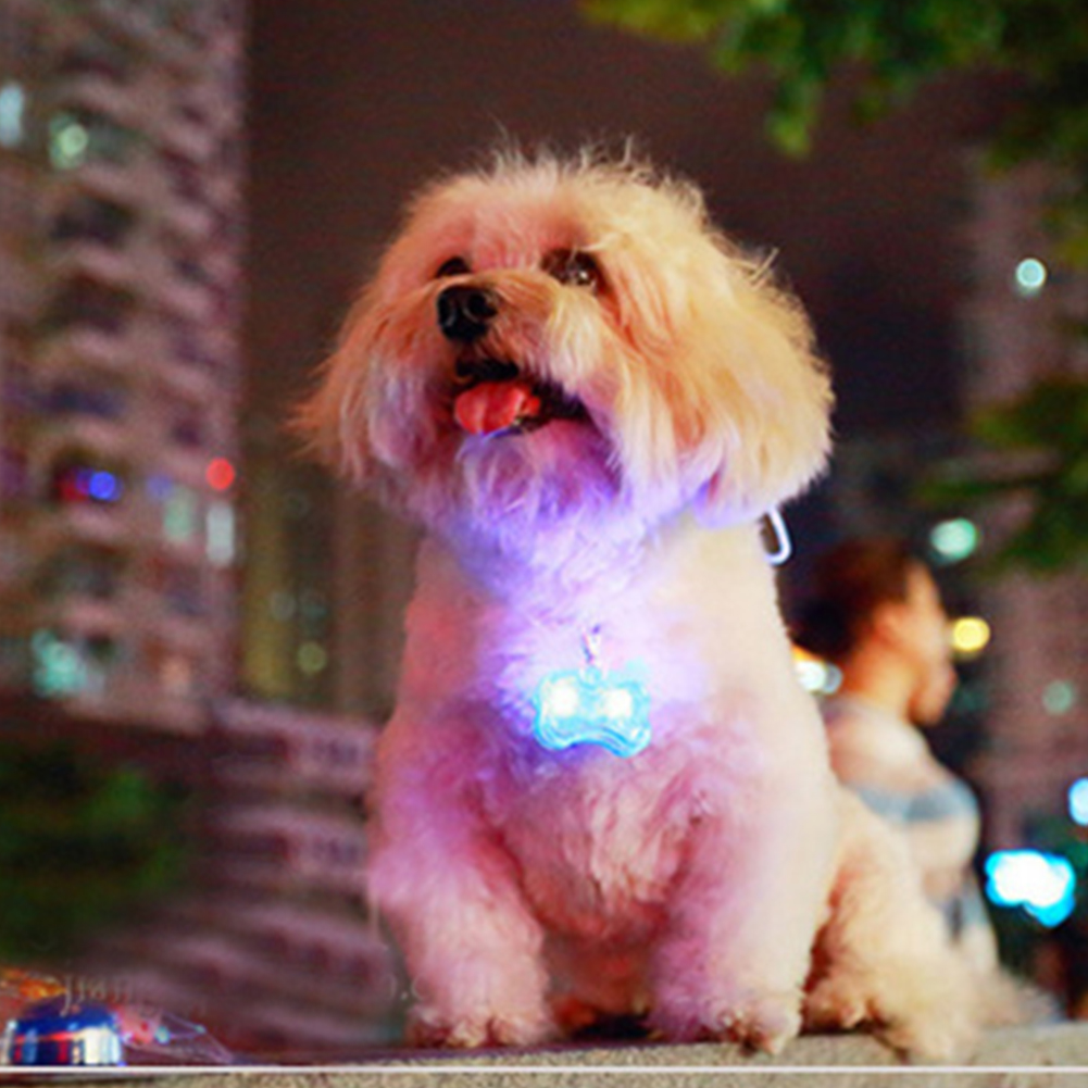 New Pet Products Pet Dog Bone Charms Accessories Led Light Hooked On Dog Collar Pet Dog Cat Identity(China (Mainland))