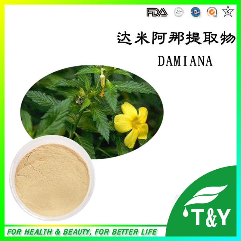 Bulk Supply Natural Damiana extract powder(China (Mainland))