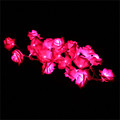 1Pcs 20LED Rose Flower String Light For Wedding Garden Outdoor Party Christmas Decoration Lamps