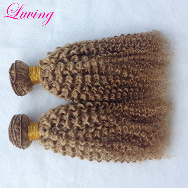 7A Malaysian Blonde Curly Hair Extensions Медовый блондин Remy Human Hair Weave 2PCS Pure Color 27 Kinky Curly Blonde Virgin Hair