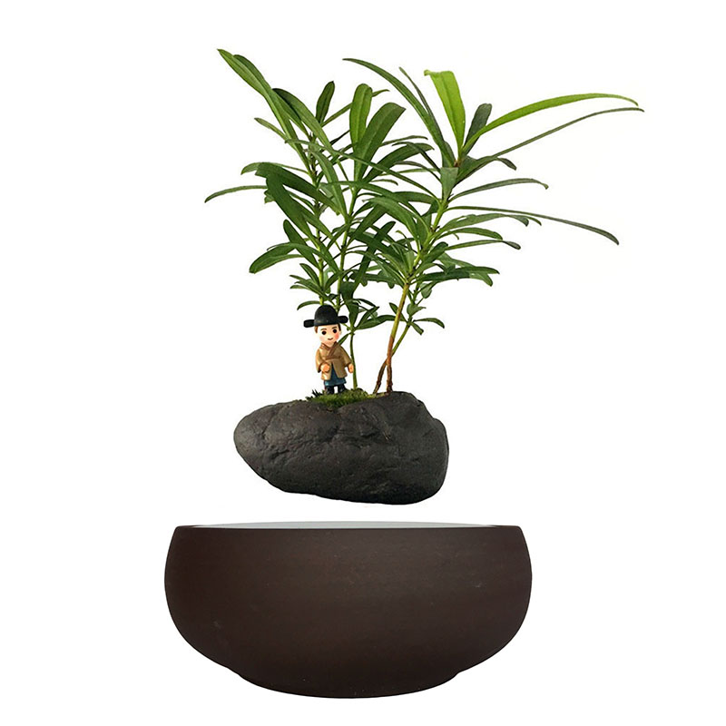 Popular Ceramic Pots For Plants Buy Cheap Ceramic Pots For