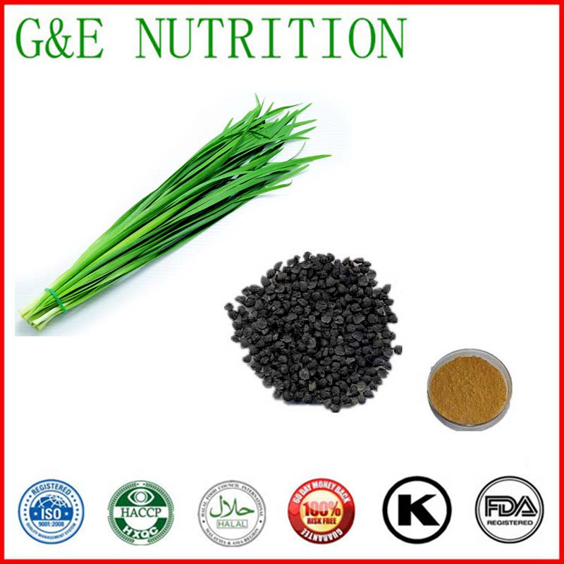 Factory Supply Leek Seed Powder Extract 10:1 700g<br><br>Aliexpress