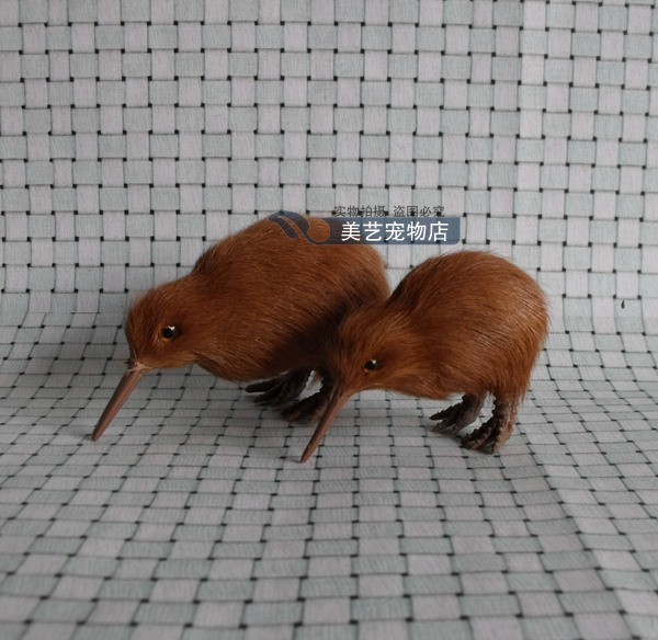 simulation toy New Zealand's national bird small kiwi model handicraft,plastic& fur bird ,home decoration toy Xmas gift w5919(China (Mainland))