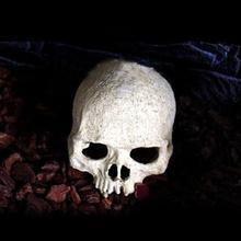 Reptile Vivarium Decoration Human Skull Hide Cave Nest Aquarium Underwater Ornament (China (Mainland))