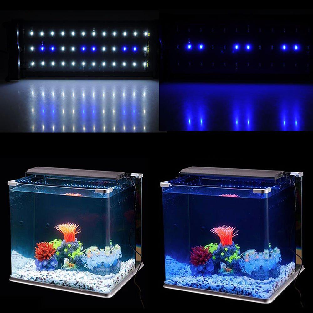 Blue Marine Fish Tank Aquarium Acuario Aquarium Accessories Fish ...