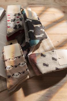 Spain Women's sock / Girls Socks   2 pairs/lot   lady's hosiery in high quality  low price