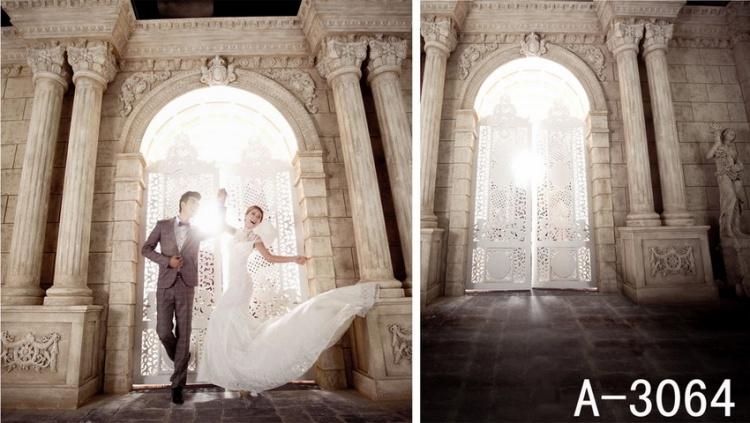 Здесь можно купить  600CM*300CM 2013 new arrival Romanesque architecture carved doors backgrounds photo studio YL  Бытовая электроника