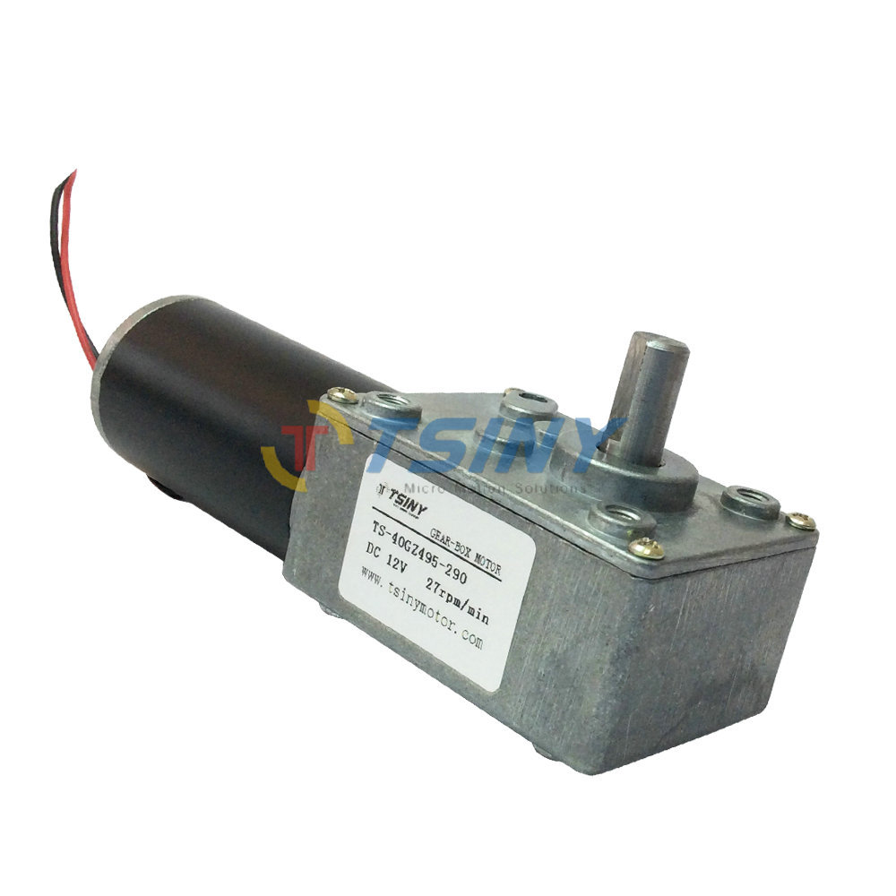 Electric 12vdc reversible 27rpm dc worm geared motor with Gearbox motors
