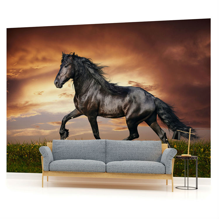 buy beautiful black horse wallpaper. Black Bedroom Furniture Sets. Home Design Ideas