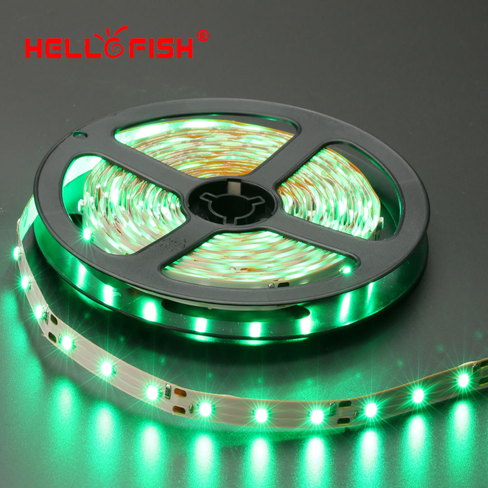 Hello Fish 3528 LED strip, single color 5 meters 300 SMD LED ribbon, DC 12V White/Warm White/Red/Green/Blue/Yellow LED tape(China (Mainland))
