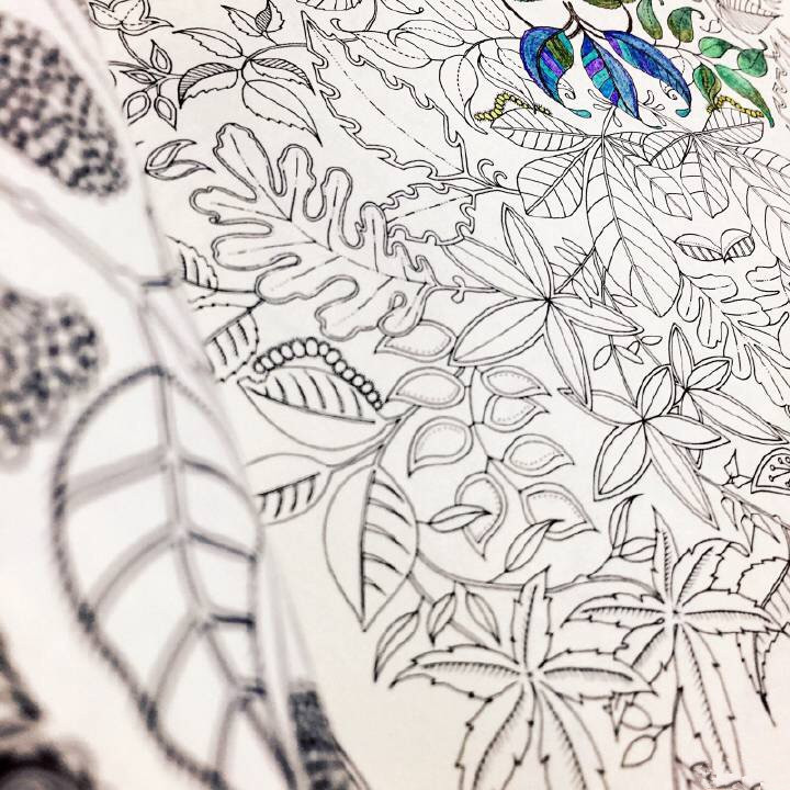 Secret Garden An Inky Treasure Hunt And Coloring Book For
