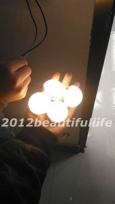 DC12V 3W 5W warm white cool white high bright diy led bulb(China (Mainland))