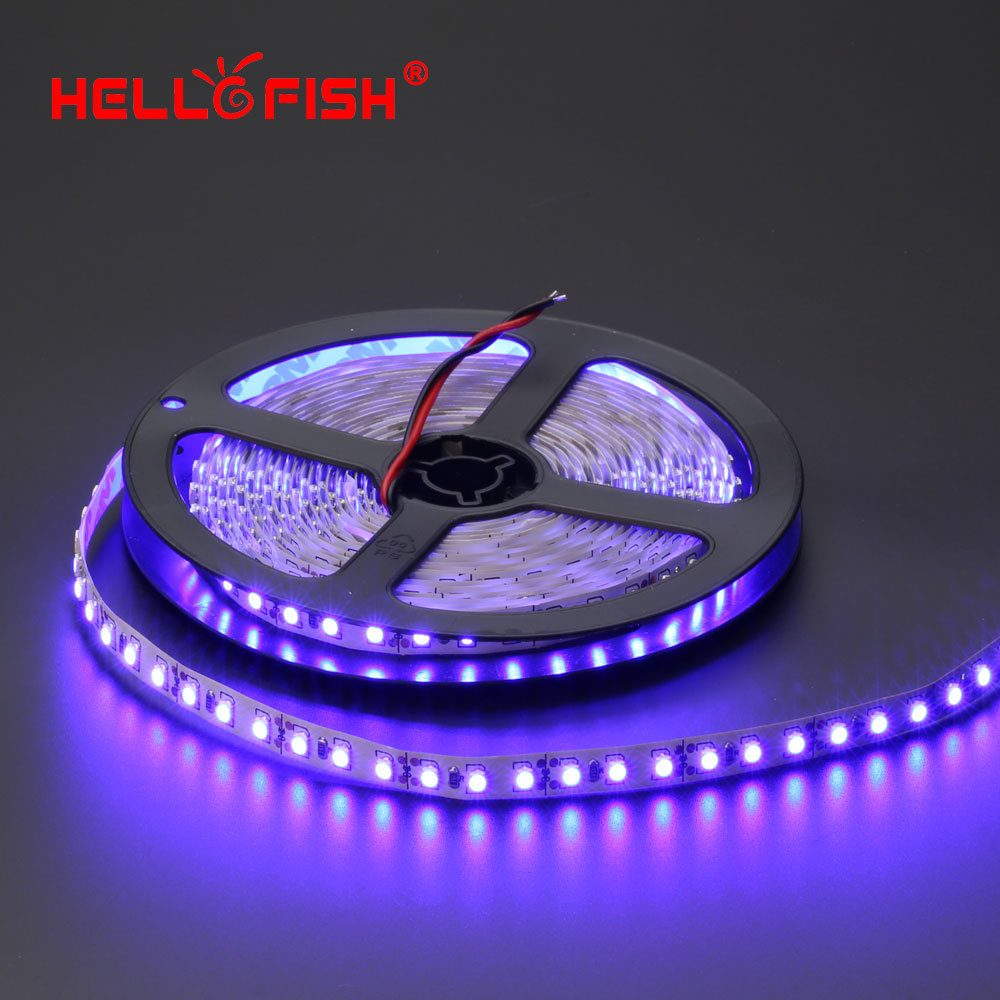 Hello Fish 5m 600 LED tape, 3528 SMD 12V flexible LED strip light, white/warm white/blue/green/red/yellow(China (Mainland))