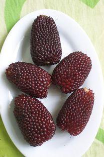 20 seeds/pack Fruits vegetables seeds pineapple fruit corn seed yellow pineapple fruit corn seeds