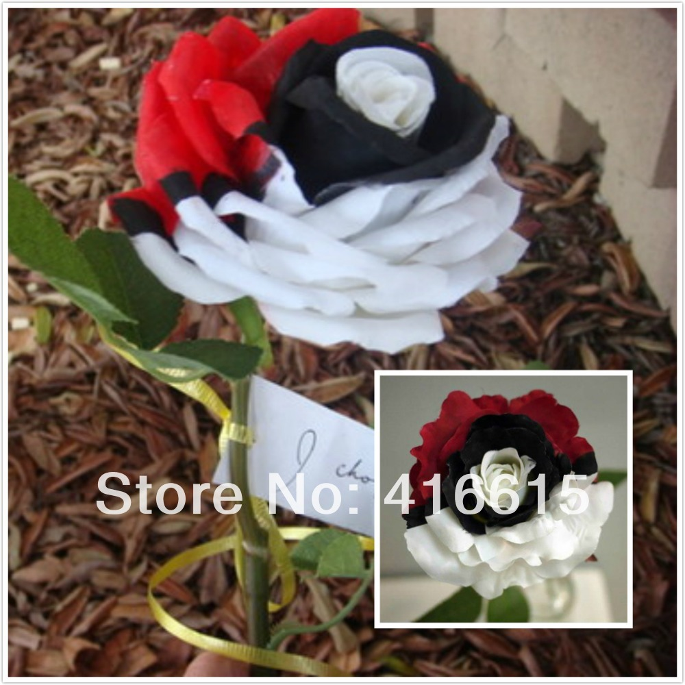 200 Pieces Pokemon Rose Seeds Black Pearl Rose , China Flower Seeds , Shang Hai World Expo Plants Dedicated + Mysterious Gift(China (Mainland))