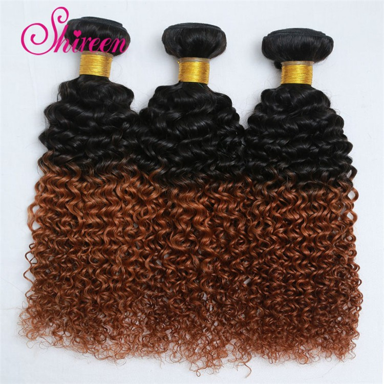 Brazilian Ombre Hair Extensions With Closure Curly Wave 1pc Lace Closure With 3pcs Ombre Hair Bundles Tissage Bresilienne Curly