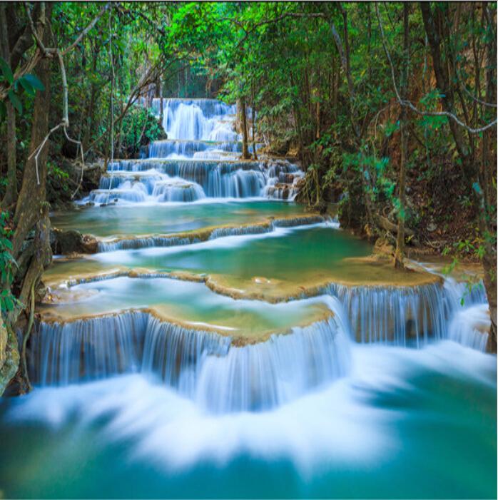 Acquista all 39 ingrosso online foresta naturale carta da for Carta da parati natura 3d