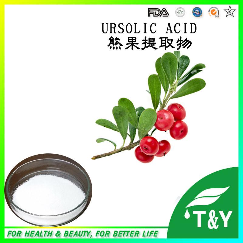 100% Natural Bearberry Extract powder 20%~99% Arbutin, 25%~50% Ursolic Acid