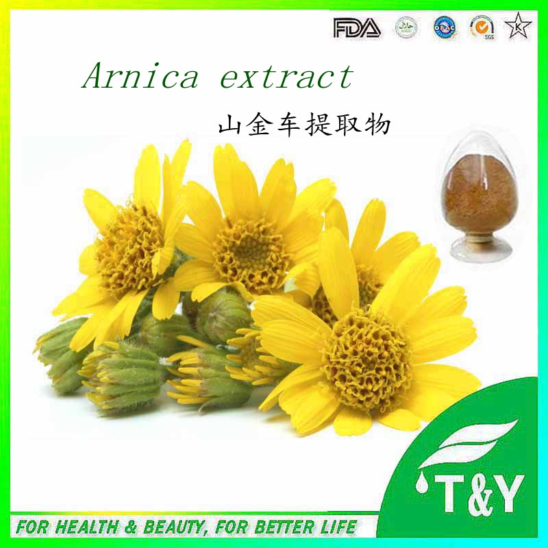 History Anti-inflammatory herbal Arnica Montana Extract 600g/lot free shipping<br><br>Aliexpress