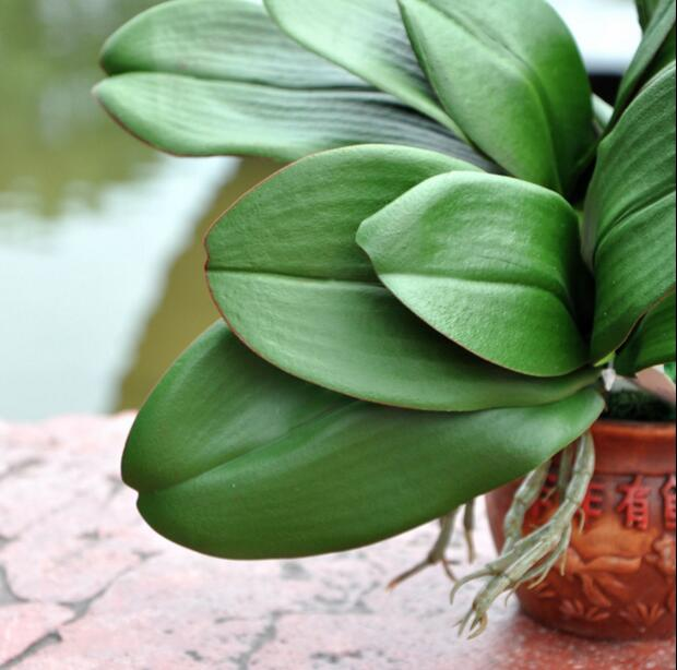 Seta orchidee in vaso promozione fai spesa di articoli in for Nuovo stelo orchidea