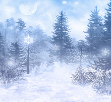 200CM*150CM (5ft*6.5ft) White Snow Christmas Backdrops Photography Christmas Tree Background for Photo Studio Photo Background