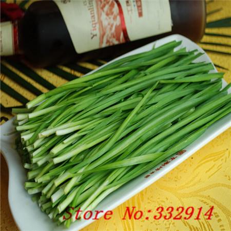 Poireau fleur promotion achetez des poireau fleur promotionnels sur alibaba group - Poireaux a repiquer vente ...