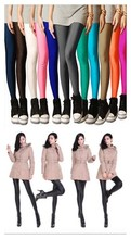 2015 Plus Size super Eelastic Candy Color Women's High Stretched Autumn Summer Neon Leggings-DDK30-Leggings-An(China (Mainland))