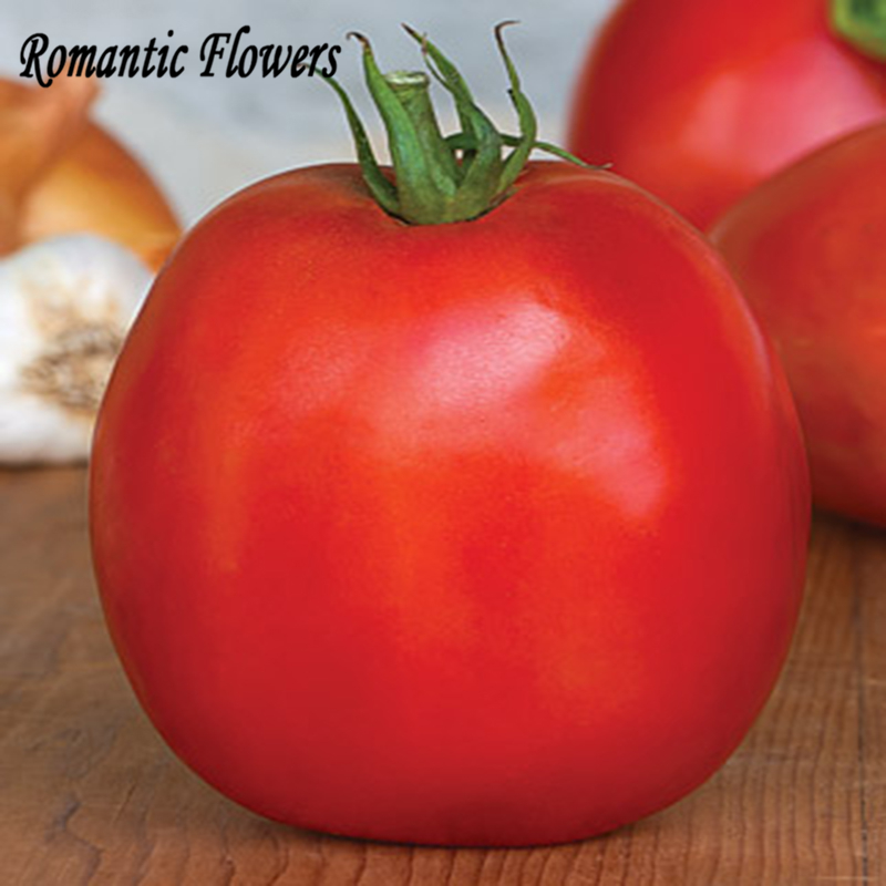 OXHEART Pink Heirloom Organic Tomato Seeds, 100 Seeds / Bag, The Old Traditional Varieties Of Vegetables(China (Mainland))